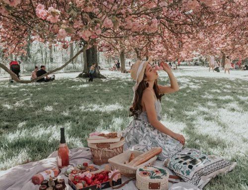 梨之鄉梨果季系列活動之一  梨果樹下的野餐