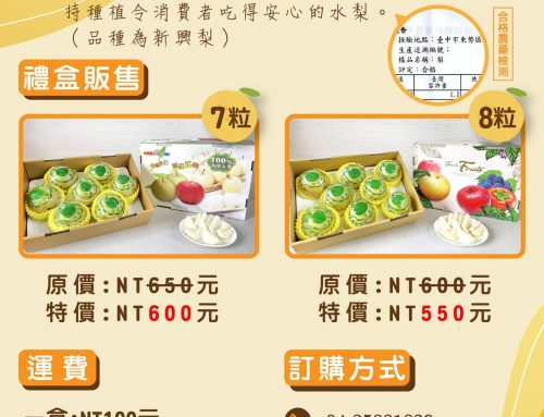 梨之鄉梨果季-梨子禮盒